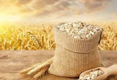 """2019年中國糧食產量及分省市排行榜分析,""""蝗災""""對我國糧食產業影響有限「圖」"""