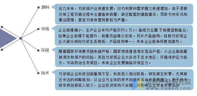 我国竹浆产业发展面临的问题