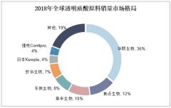 2018年全球透明质酸原料销量市场格局
