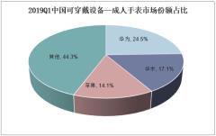 2019Q1中国可穿戴设备—成人手表市场份额占比