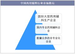 中国药用辅料行业市场格局