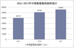 2015-2017年中国蓝莓栽培面积统计