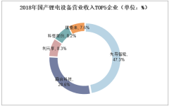 2018年国产锂电设备营业收入TOP5企业(单位:%)