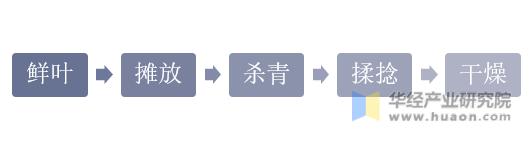 绿茶加工工艺的基本流程