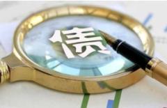 中央财政发行抗疫特别国债,2020年中国国债发行额占比与发达国家仍有较大差别「图」