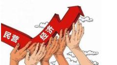 """政策利好下,民营企业发展驶入快车道,2020年""""两会""""重提民营经济发展重要性「图」"""