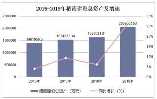 2016-2019年栖霞建设(600533)总资产、营业收入、营业成本及净利润统计