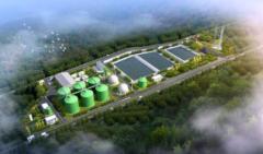2020年中国生物天然气行业市场调查研究及投资前景预测