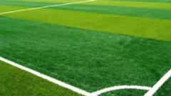 人造草坪市场需求及前景分析,体育草坪业务将迎来蓬勃发展的新机遇「图」