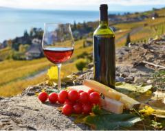 2020年中国葡萄酒行业市场前景预测及投资战略研究