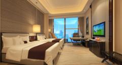 2020年中国酒店行业市场调查研究及投资前景预测