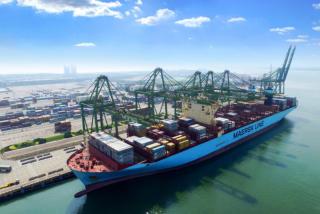 2020年上半年货物进出口总额及结构分析
