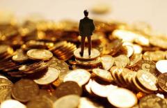 沈建光:金银大涨为哪般?
