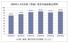 2020年1-6月仔猪(普通)集贸市场价格走势及增速分析