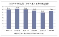 2020年1-6月活猪(中等)集贸市场价格走势及增速分析