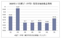 2020年1-7月橙子(中等)集贸市场价格走势及增速分析