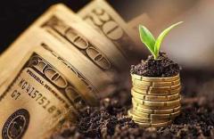 2020年中国普惠金融行业市场前景预测及投资战略研究