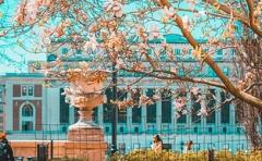 2020年安徽高考本科一批招生院校名单及最低录取分数线排名表(理科)