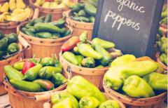 """拼多多推动农产品在线上""""活跃""""起来止步持续推动规模增长"""