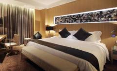 2020年中国酒店行业市场前景预测及投资战略研究