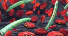 2020年中国疟疾发病数量、死亡人数、治疗及防控措施「图」