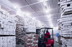 2019年中国食品冷链物流市场规模分析,需培养专业型人才「图」