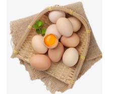 """春节过后,农产品批发价格集体回落 """"鸡蛋降价""""被顶上热搜「图」"""