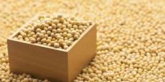 2020年全球及中国大豆产量、需求量及进出口现状分析,国内大豆进口量突破一亿吨「图」