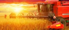 农业农村部:适时启动《种子法》等相关法律法规修订工作