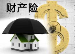 2021年中国财产保险行业发展现状研究,产险结构持续优化「图」