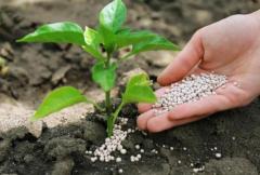 2021年中国化肥行业发展潜力分析及投资方向研究