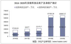 2016-2020年龙软科技(688078)总资产、总负债、营业收入、营业成本及净利润统计