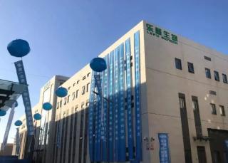 乐普生物递交赴港IPO申请 2020年研发支出达3.54亿元