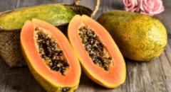2020年全球及中国木瓜种植现状分析,国内木瓜出口持续走高「图」