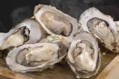 中国牡蛎养殖现状和进出口分析,牡蛎养殖产量逐渐上升「图」