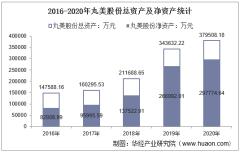 2016-2020年丸美股份(603983)总资产、总负债、营业收入、营业成本及净利润统计
