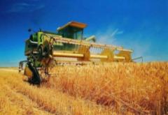 农业农村部:鼓励社会资本投资现代种养业等13个重点领域