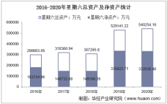 2016-2020年星期六(002291)总资产、总负债、营业收入、营业成本及净利润统计