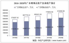 2016-2020年广东明珠(600382)总资产、营业收入、营业成本、净利润及每股收益统计