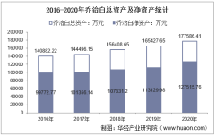 2016-2020年乔治白(002687)总资产、营业收入、营业成本、净利润及股本结构统计