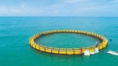 中国休闲渔业产值不断上升,旅游导向型休闲渔业占比最高「图」