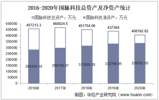 2016-2020年国脉科技(002093)总资产、营业收入、营业成本、净利润及股本结构统计