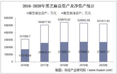 2016-2020年黑芝麻(000716)总资产、营业收入、营业成本、净利润及股本结构统计