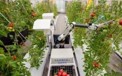 可喜成就!传统农业向数字农业转型,大数据链接产销,产业有了风向标,产量逐年递增!「图」