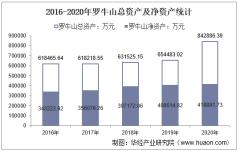 2016-2020年罗牛山(000735)总资产、总负债、营业收入、营业成本及净利润统计