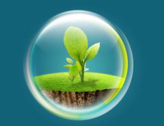2021年中国环保行业市场前景预测及投资战略研究