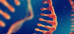 基因修饰动物模型服务行业主要法律法规及相关产业政策分析「图」