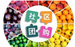2021年中国社区团购行业发展趋势预测及投资战略咨询