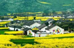 数字经济的蓬勃发展和消费体验升级推动乡村旅游与相关产业融合发展