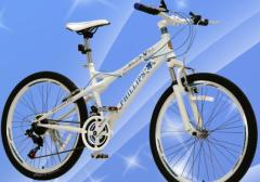 2020年中国自行车产量、进出口及竞争格局分析,自行车品牌效应明显「图」